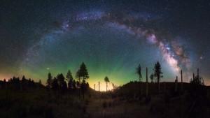 Forest Milky Way Night Sky Panorama