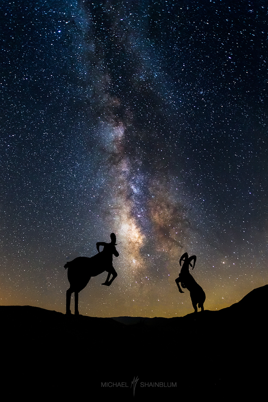 Desert Ram Sculptures Milky Way Silhouettes