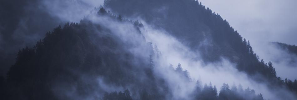 oregon fog