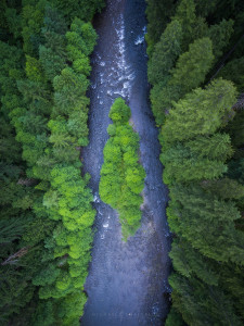 oregon aerial photography