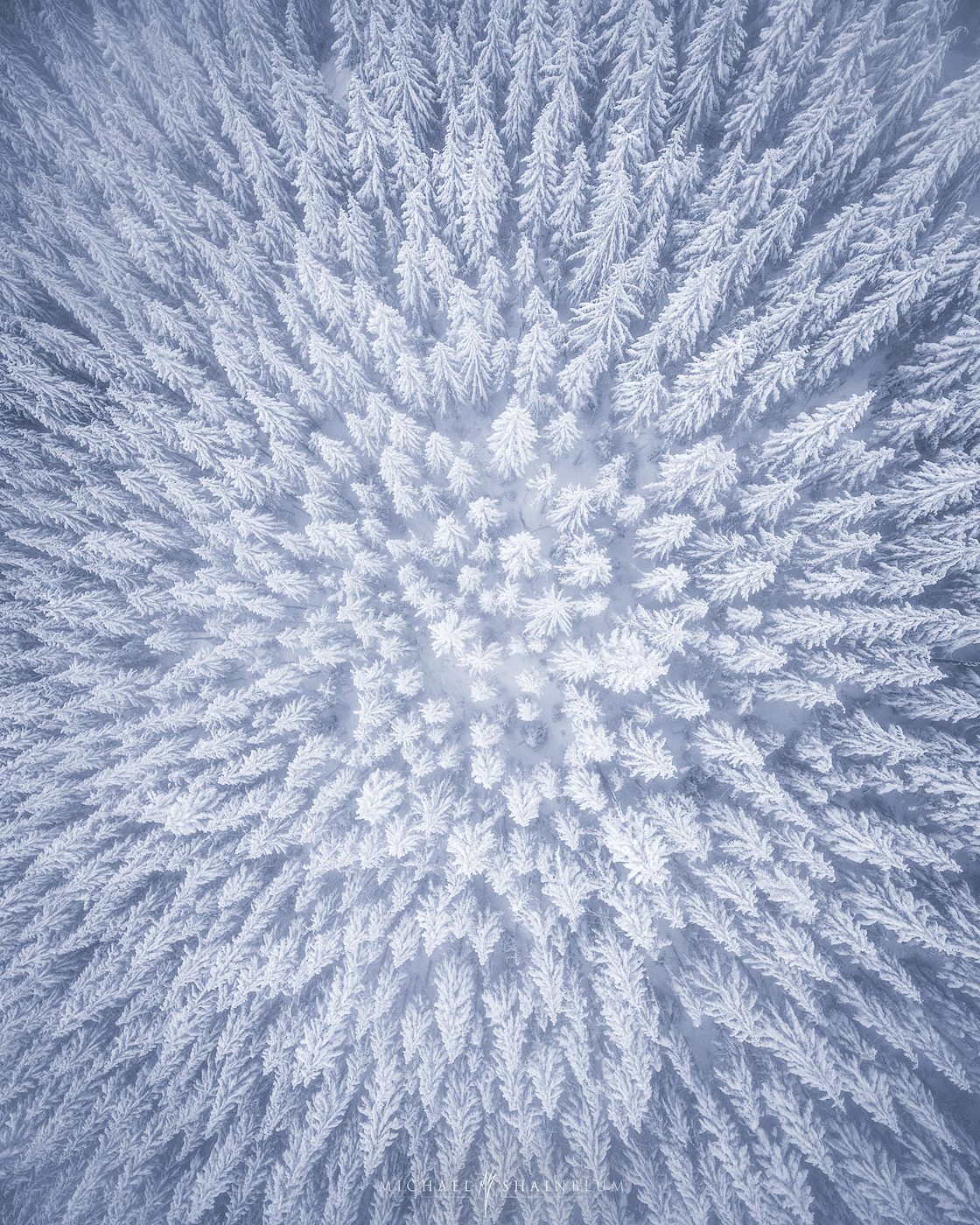 aerial photography snowy tree forest