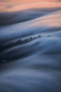 san francisco photography, fog landscape