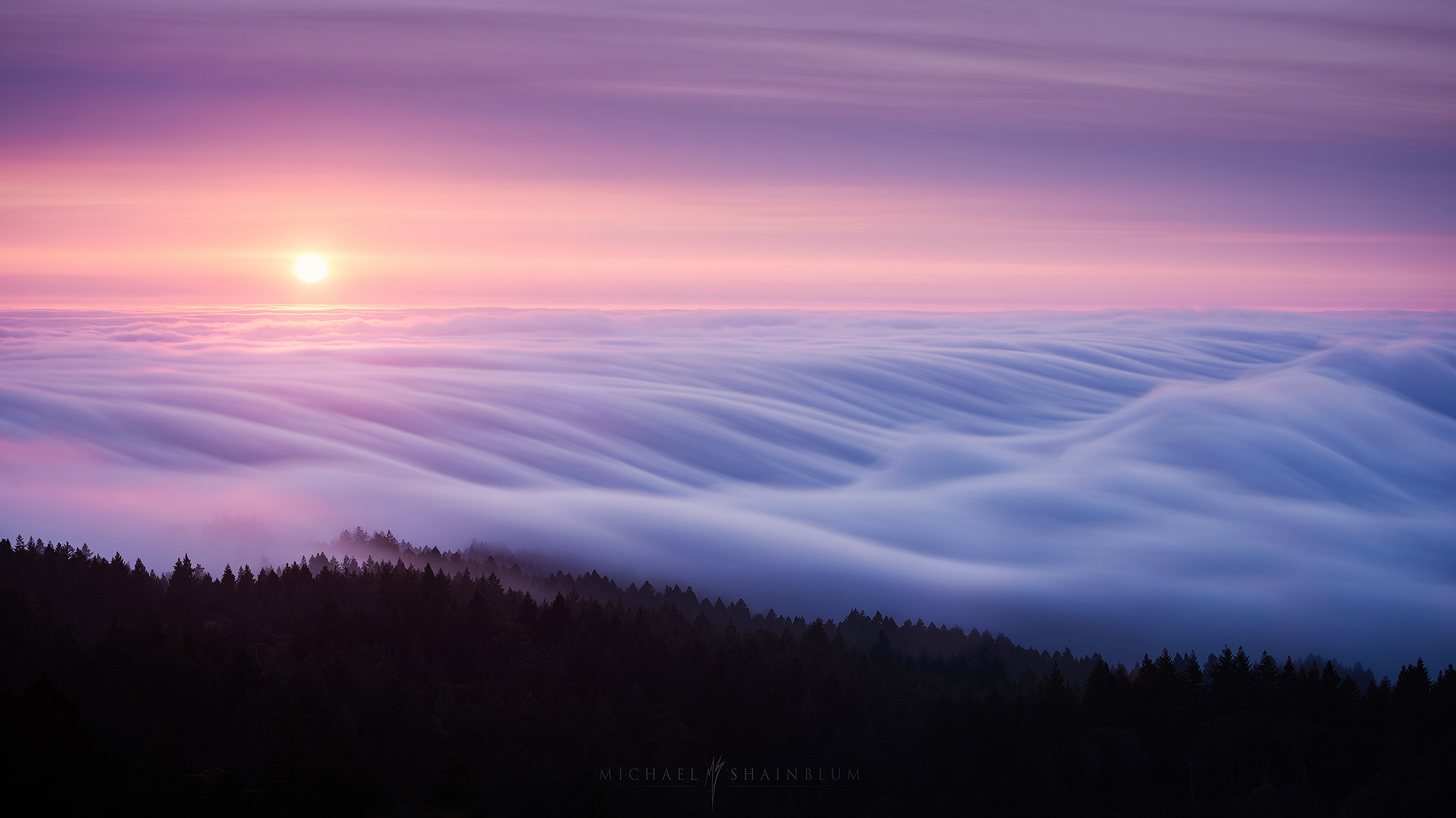 san francisco photography and fog timelapse