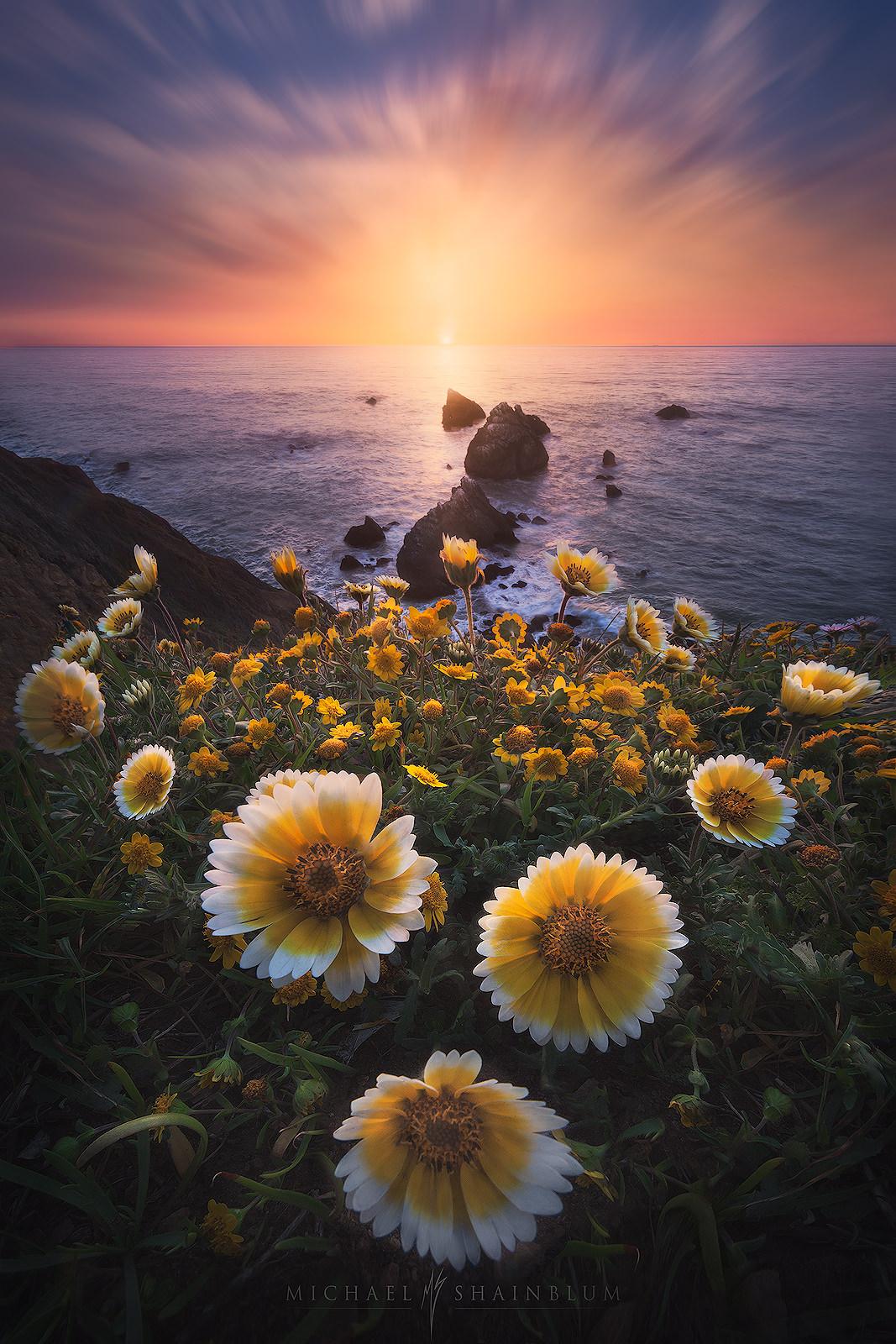 California Seascape Photography