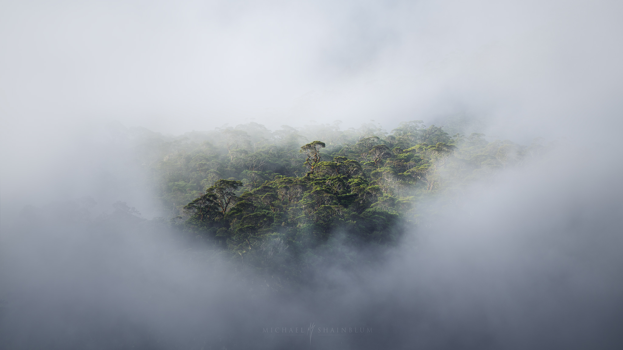 Milford Sound Waterfall New Zealand Landscape Photography