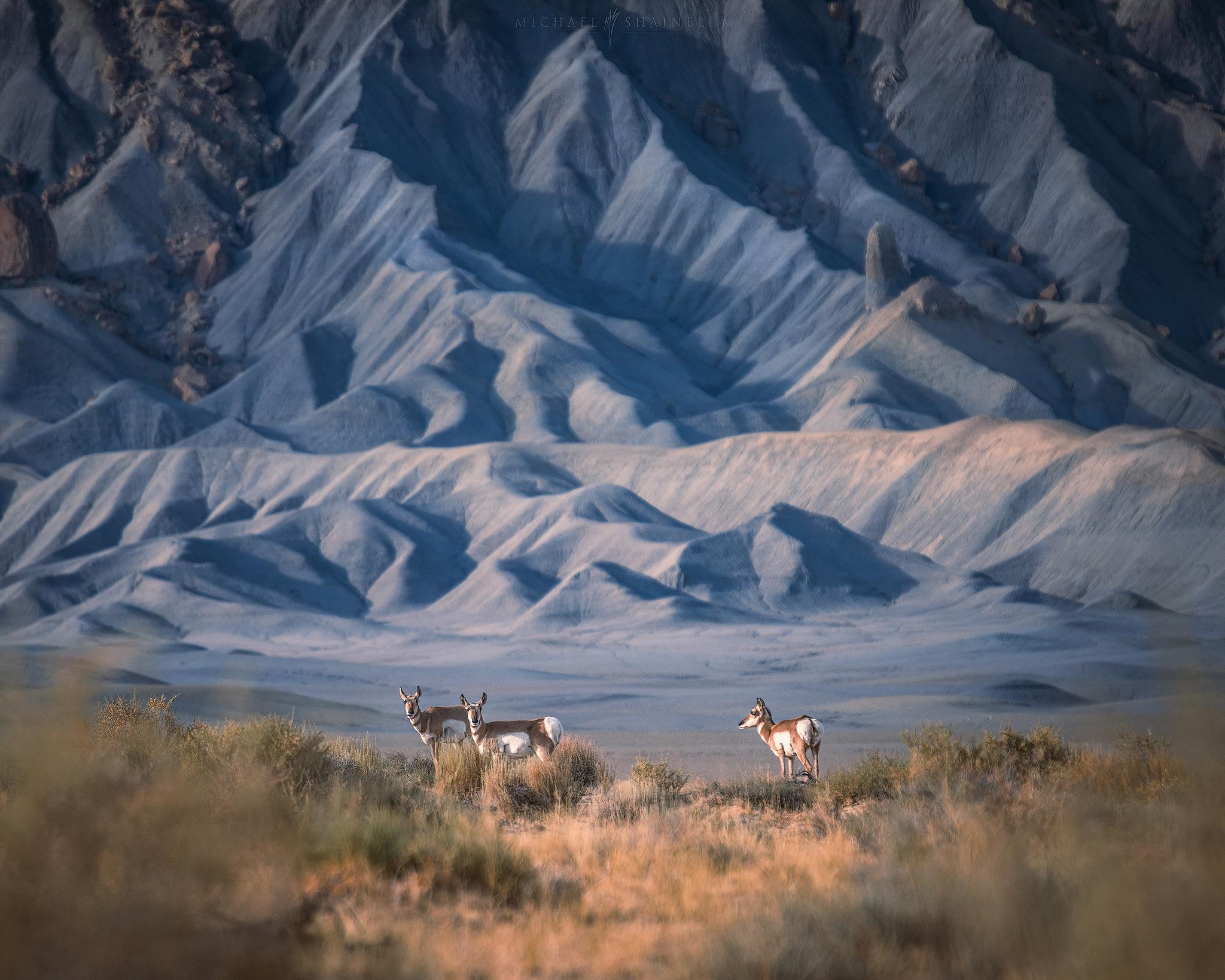 utah landscape photography 2020