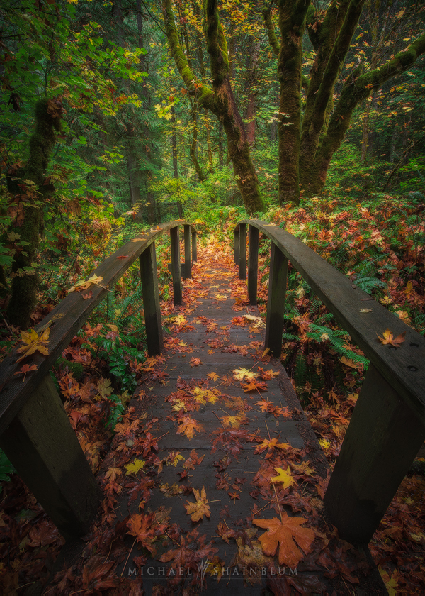 Fall Autumn Oregon Landscape Photography
