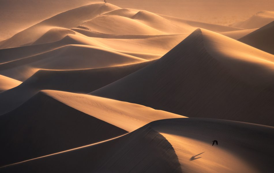 Death Valley National Park, Sand Dunes, California Landscape Photography